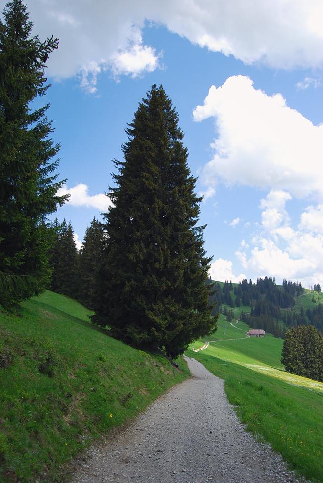 09-chiara-lanero-travel-blogger-rellerli-mountain-switzerland-adventure-alps